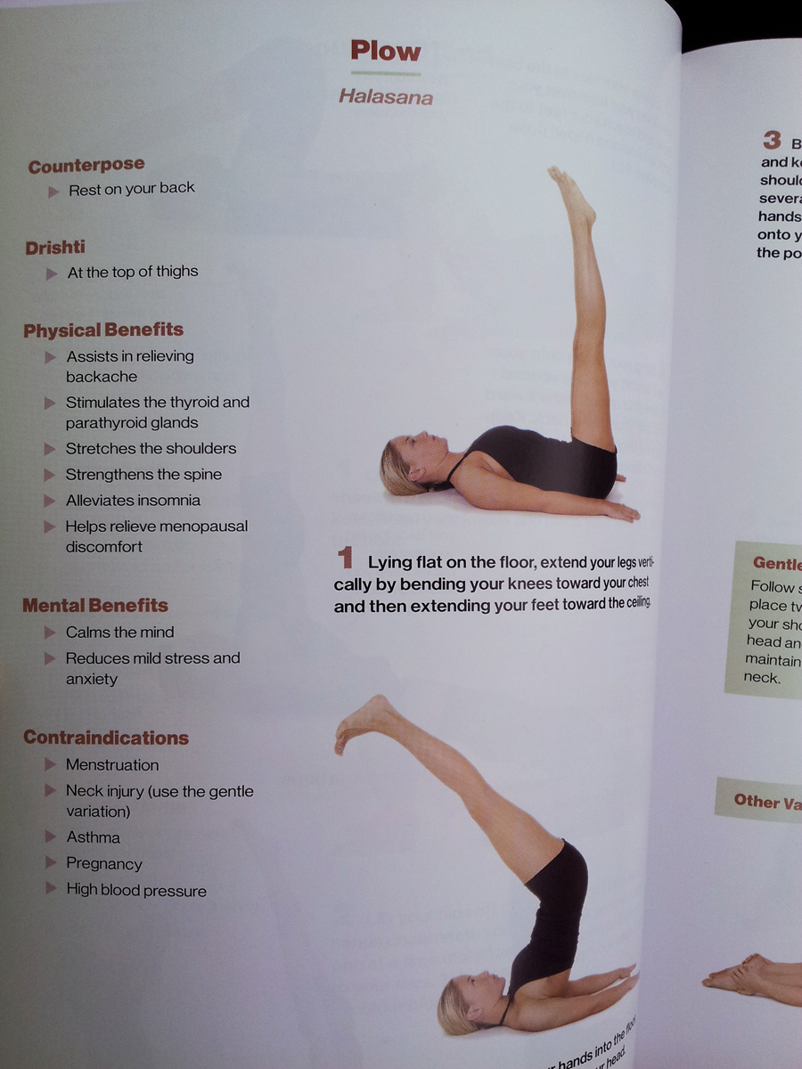 Beginner S Guide To Yoga Hathayoga Com