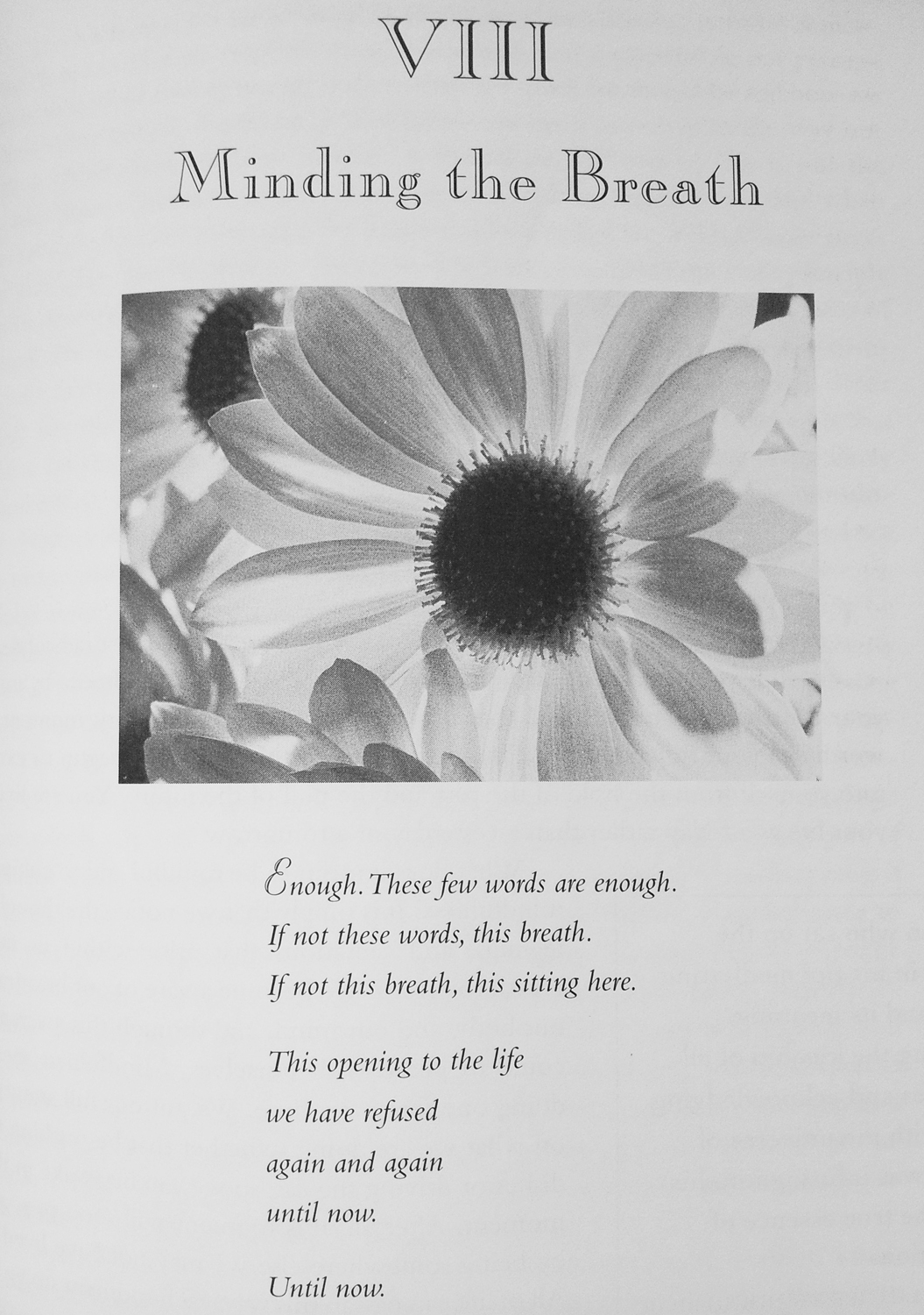 Breathing-book-Minding the breath