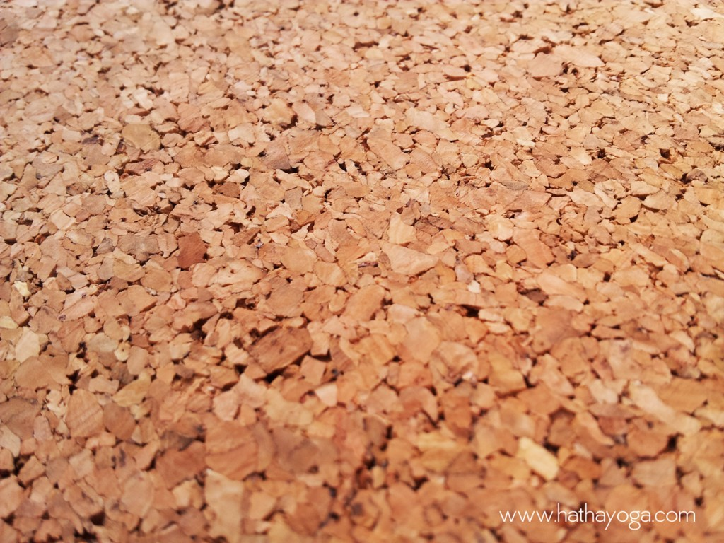 hatha-yoga-yoloha-cork-mat-cork-close-up