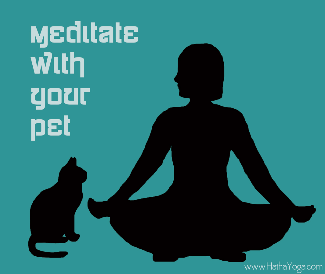 lotus-hatha-yoga_dot_com_mediation-with-your-pet-6