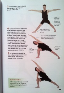 beginner's guide to yoga  hathayoga